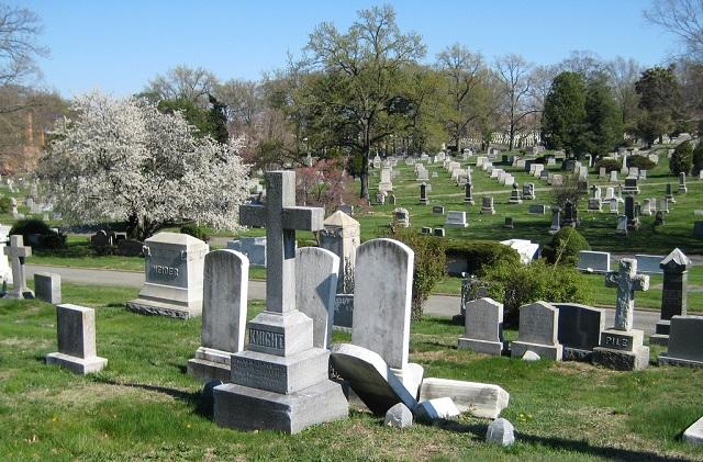 発達障害の外出。墓参りに行ってきました